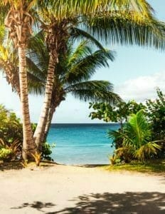 Picture of beach and trees for Real Wealth Show Podcast Episode #649