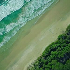 Picture of trees and beach and sea for Real Wealth Show Podcast Episode #686