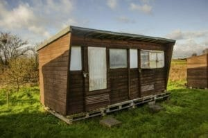 Header Image for Article: Tiny Homes Becoming a BIG Deal